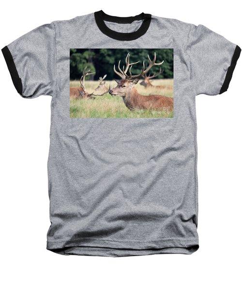 Red Deer Stags Richmond Park Baseball T-Shirt