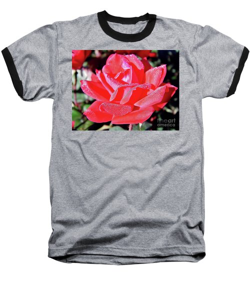 Red - Dew Covered  - Rose Baseball T-Shirt