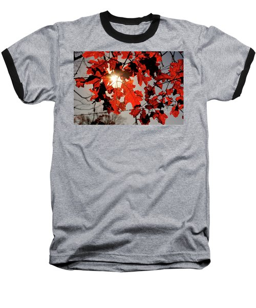 Red Fall Leaves Baseball T-Shirt