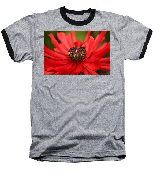 Red Flower Baseball T-Shirt by Ralph A  Ledergerber-Photography