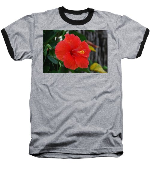 Baseball T-Shirt featuring the photograph Red Flower by Rob Hans