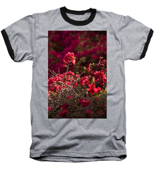 Baseball T-Shirt featuring the photograph Red Flowering Quince Schrub by Daniel Hebard