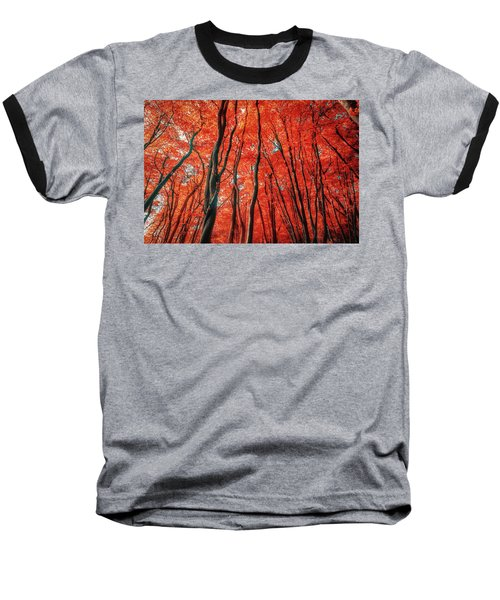 Red Forest Of Sunlight Baseball T-Shirt