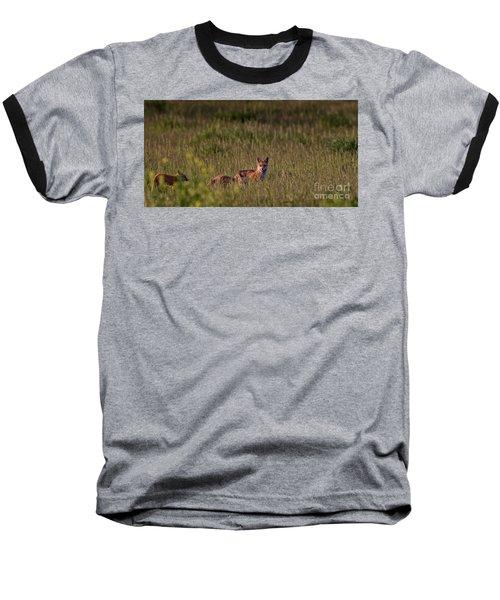 Red Fox Family Baseball T-Shirt