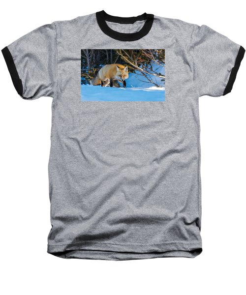 Baseball T-Shirt featuring the photograph Red Fox In Winter Snow by Yeates Photography