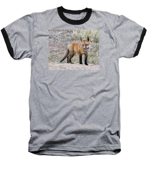 Red Fox Kit Baseball T-Shirt