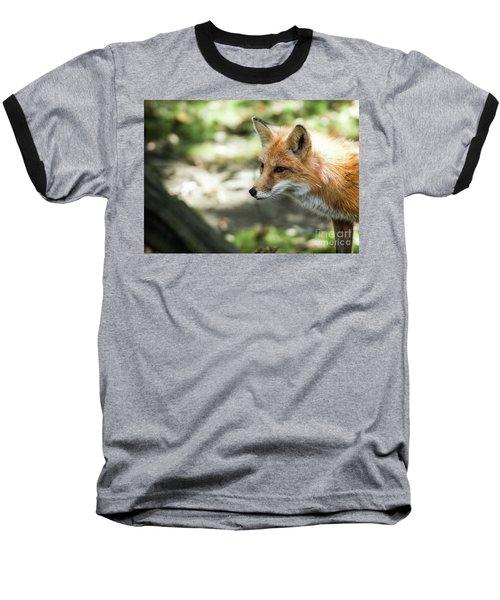 Red Fox Baseball T-Shirt by Lisa L Silva