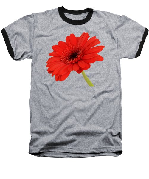 Red Gerbera Daisy 2 Baseball T-Shirt by Scott Carruthers