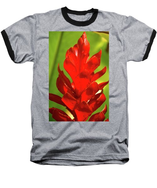 Red Ginger Bud After Rainfall Baseball T-Shirt by Michael Courtney
