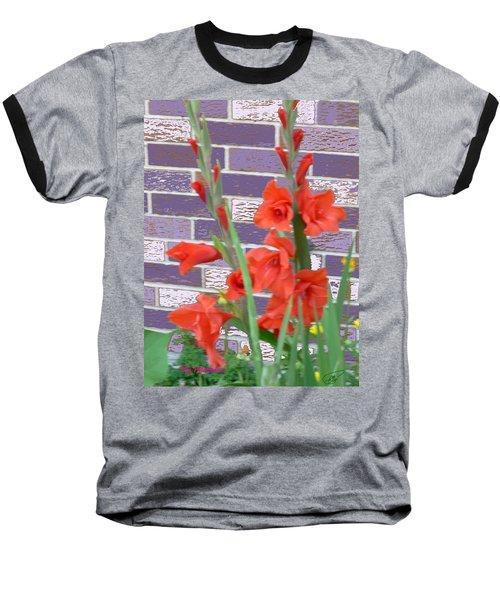 Red Gladiolas Baseball T-Shirt