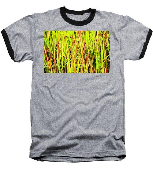 Red Green And Yellow Grass Baseball T-Shirt
