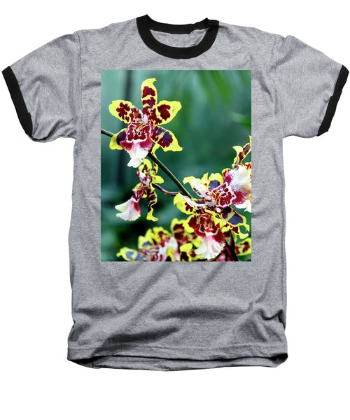 Striped Maroon And Yellow Orchid Baseball T-Shirt