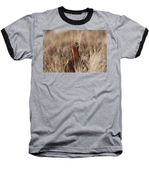 Red Grouse Calling Baseball T-Shirt