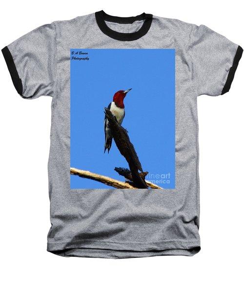 Red Headed Woodpecker On A Snag Baseball T-Shirt
