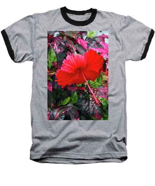 Red Hibiscus  Baseball T-Shirt by Inspirational Photo Creations Audrey Woods