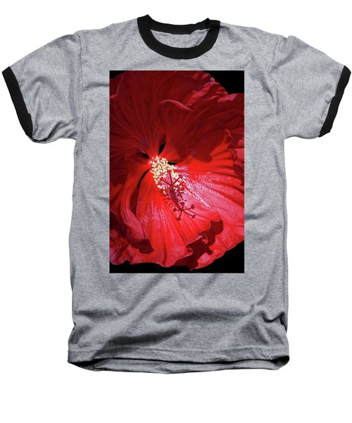 Red Hibiscus Baseball T-Shirt by Judy Johnson
