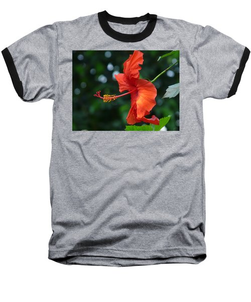 Red Hibiscus Baseball T-Shirt by Valerie Ornstein