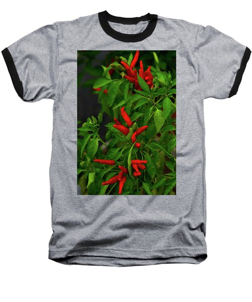 Red Hot Chili Peppers Baseball T-Shirt