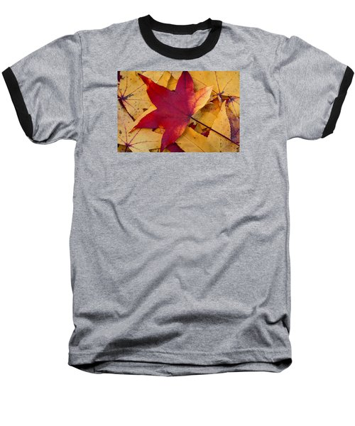 Red Leaf Baseball T-Shirt by Chevy Fleet