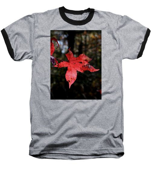 Red Leaf Baseball T-Shirt by Karen Harrison