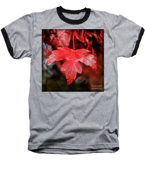 Red Leaf Baseball T-Shirt by Robert Bales