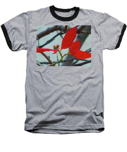 Red Leaves Baseball T-Shirt by Beto Machado