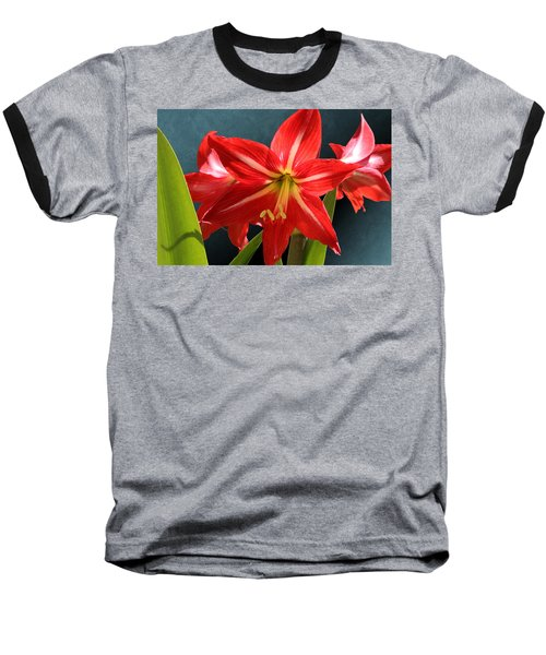 Red Lily Flower Trio Baseball T-Shirt