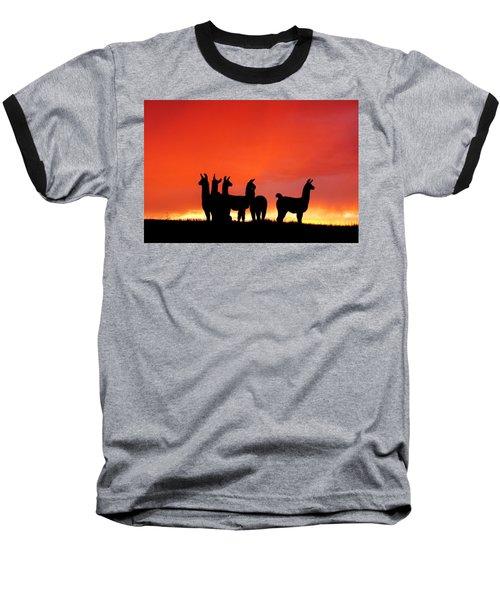 Red Llama Sunset 1 Baseball T-Shirt