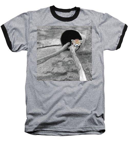 Red Panda Sleeping Baseball T-Shirt by Brooke T Ryan