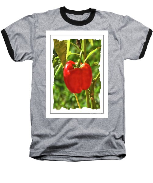 Red Pepper On The Vine Baseball T-Shirt