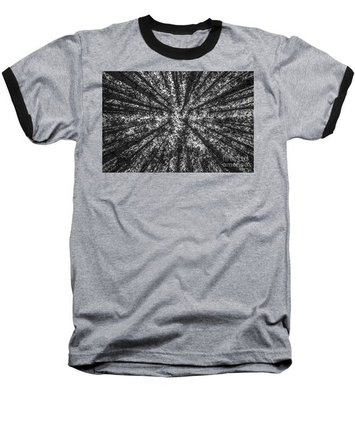Red Pine Tree Tops In Black And White Baseball T-Shirt