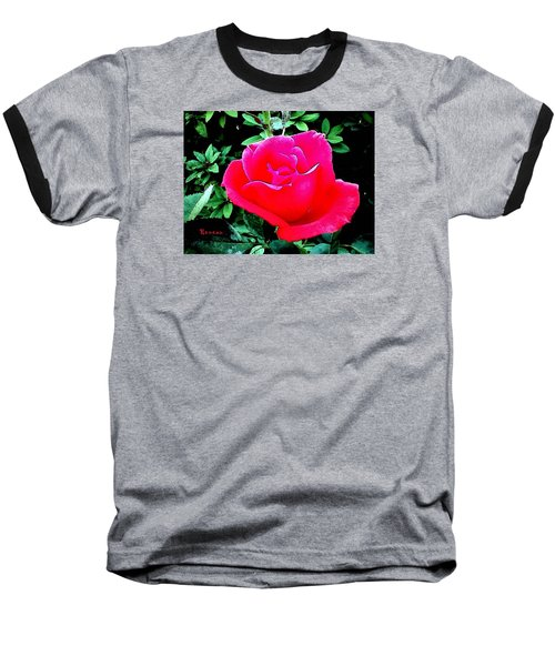 Baseball T-Shirt featuring the photograph Red-pink Rose by Sadie Reneau