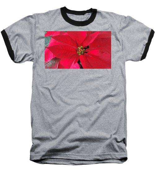 Red Poinsettia Baseball T-Shirt