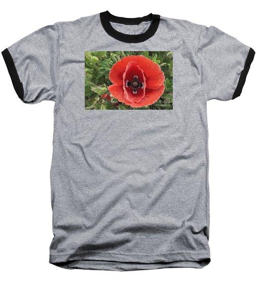Baseball T-Shirt featuring the photograph Red Poppy Flower 2 by Jean Bernard Roussilhe