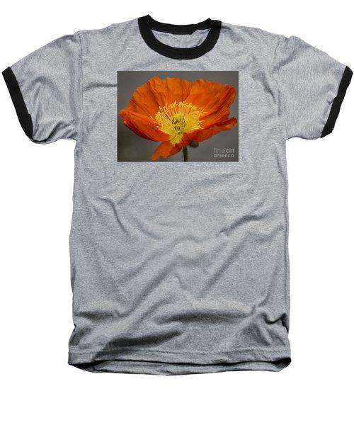 Red Poppy II Baseball T-Shirt