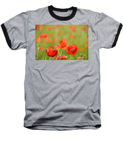 Red Poppy In A Field Of Poppies Baseball T-Shirt