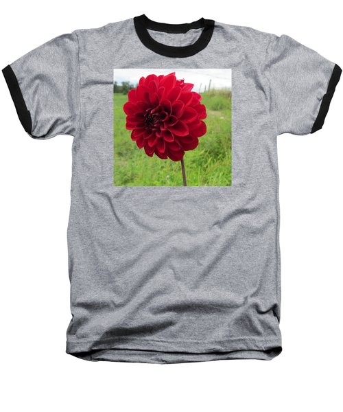 Baseball T-Shirt featuring the photograph Red, Red, Red by Jeanette Oberholtzer
