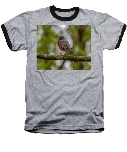 Baseball T-Shirt featuring the photograph Red Robin by Jerry Cahill