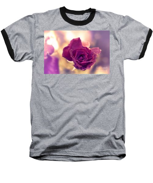 Red Rose Baseball T-Shirt by Charuhas Images