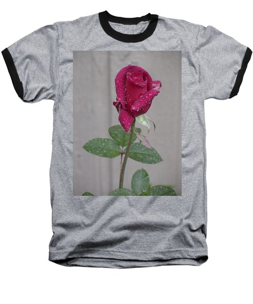 Red Rose In Rain Baseball T-Shirt