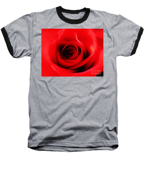 Baseball T-Shirt featuring the photograph Red Rose by Nina Ficur Feenan