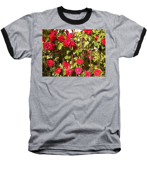 Red Roses In Summertime Baseball T-Shirt