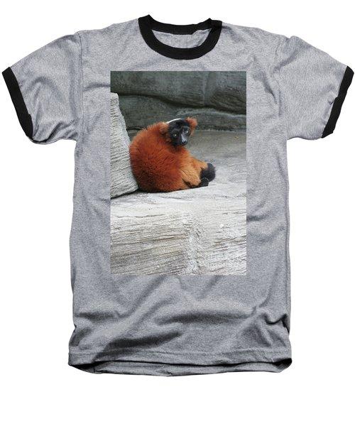 Red Ruffed Lemur Baseball T-Shirt