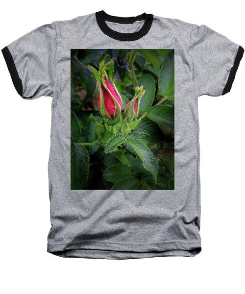 Red Rugosia Bud Baseball T-Shirt