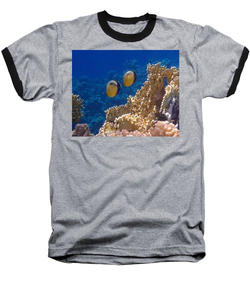 Red Sea Exquisite Butterflyfish  Baseball T-Shirt