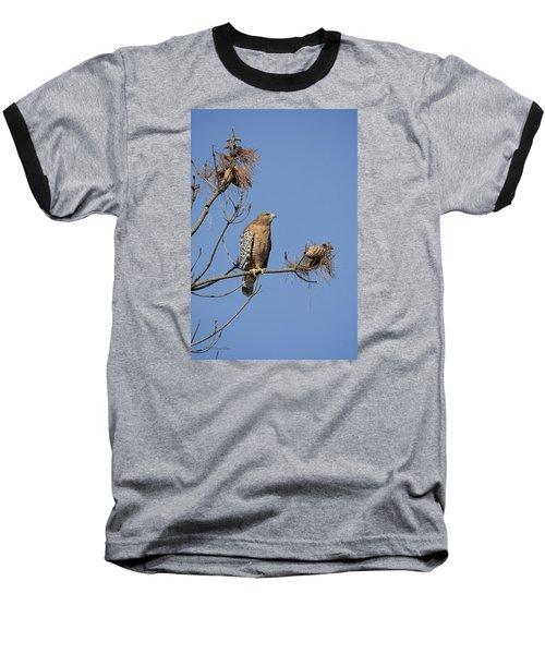 Red Shoulder Hawk Baseball T-Shirt