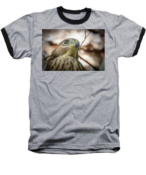 Red-shouldered Hawk Fledgling 3 Baseball T-Shirt