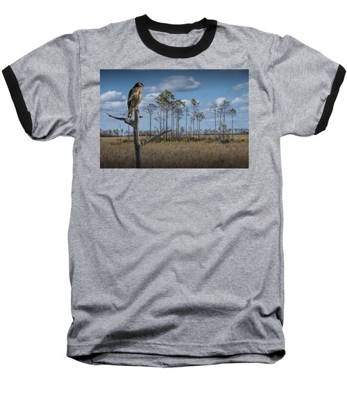 Red Shouldered Hawk In The Florida Everglades Baseball T-Shirt
