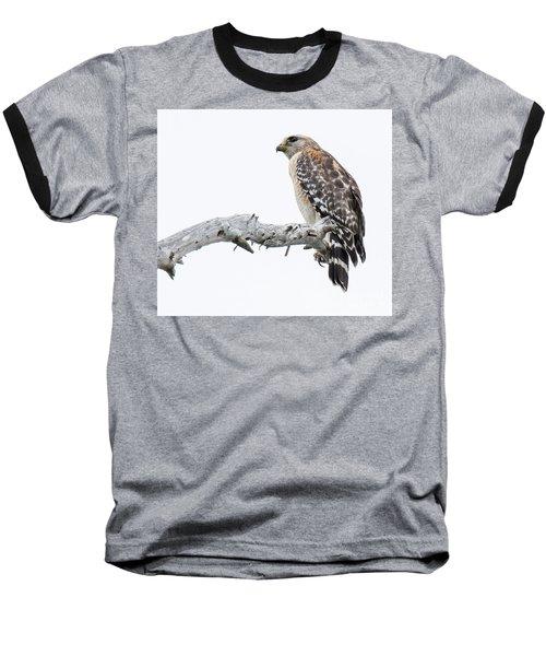 Red Shouldered Hawk Baseball T-Shirt