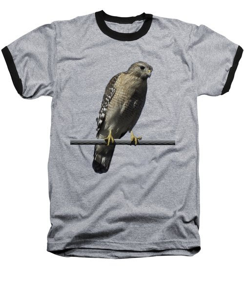 Red-shouldered Hawk Transparency Baseball T-Shirt